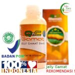 qnc jelly gamat original